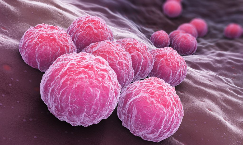 Hope for Chlamydia STI vaccine after promising initial results